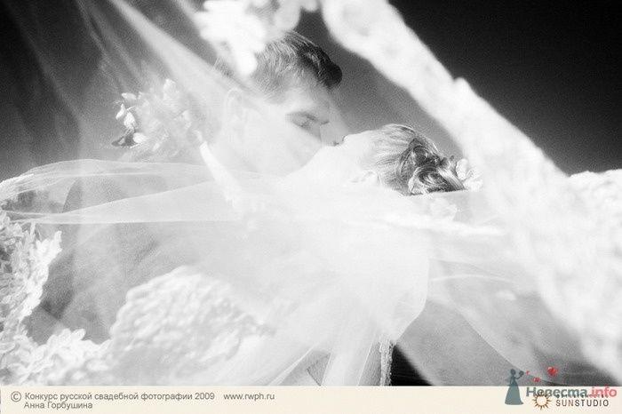 Фото 25502 в коллекции Финал Конкурса русской свадебной фотографии 2009. Фотоотчёт - Анна Горбушина - фотоагентство SunStudio
