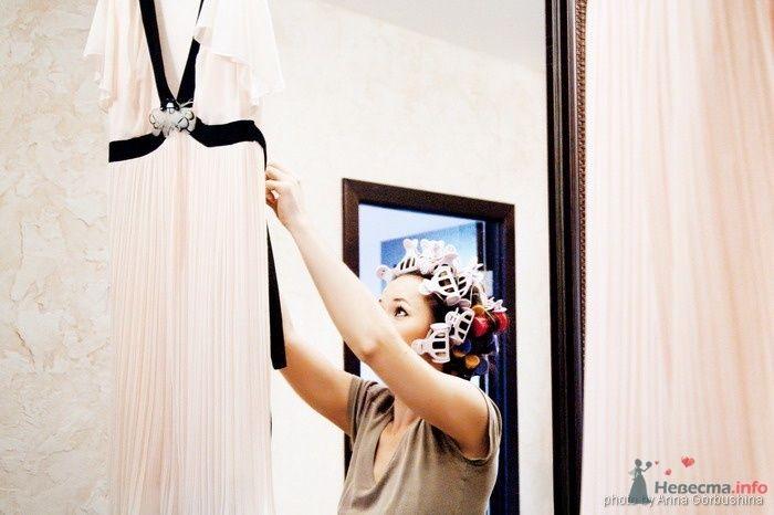 Фото 31382 в коллекции Наталья и Сергей. 19 сентября 2008 - Анна Горбушина - фотоагентство SunStudio