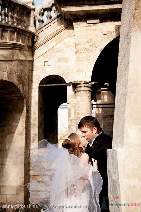 Фото 54922 в коллекции Ирина и Андрей. 2/10/2009 - Анна Горбушина - фотоагентство SunStudio