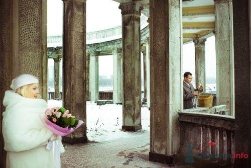 Фото 12946 в коллекции Свадебное - Фотограф Елена Зотова