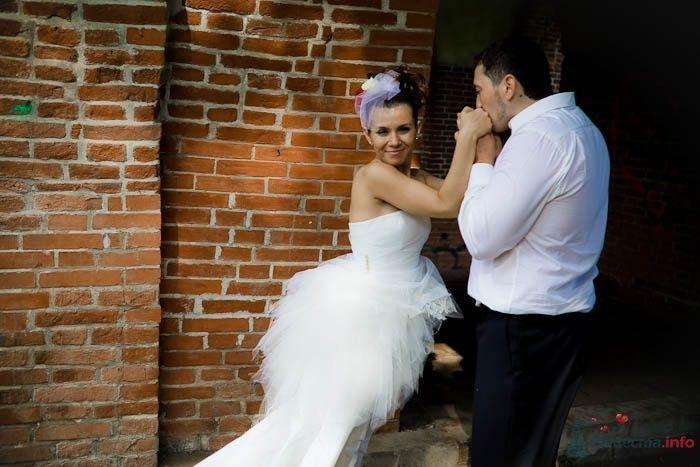 Жених целует руки невесты на фоне кирпичной стены - фото 42017 Фотограф Елена Зотова
