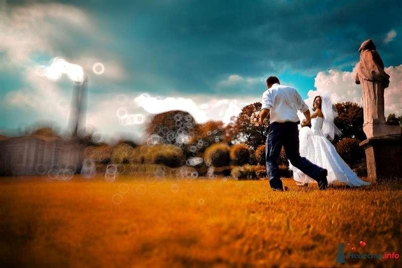 Фото 55680 в коллекции Свадебное - Фотограф Елена Зотова