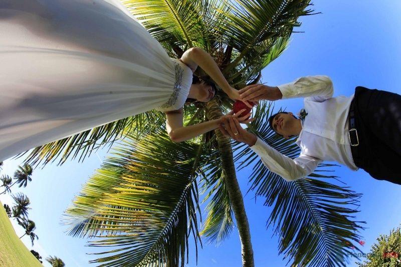 Любовь под пальмами - фото 66628 Фотограф Елена Зотова