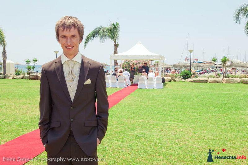 Фото 111053 в коллекции Кипр. Свадьба Кати и Сережи - Фотограф Елена Зотова