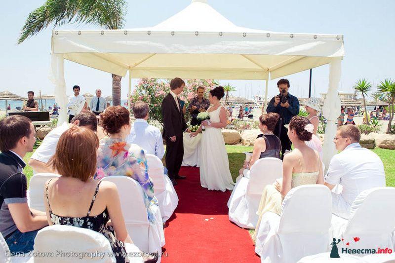 Фото 111058 в коллекции Кипр. Свадьба Кати и Сережи - Фотограф Елена Зотова