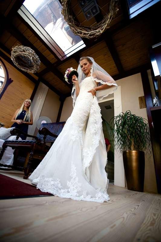 мести тоже свадьба в испанском стиле фото потрясающие существа