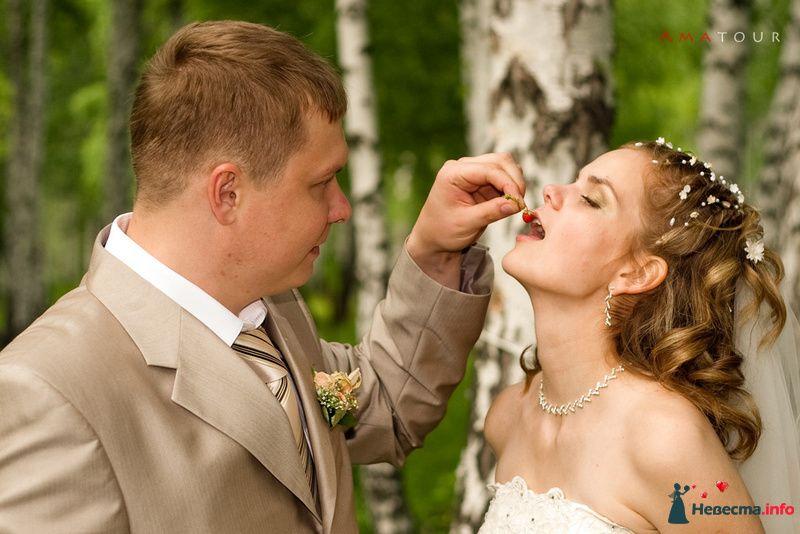 Фото 87347 в коллекции Amatour (свадебное) - Amatour