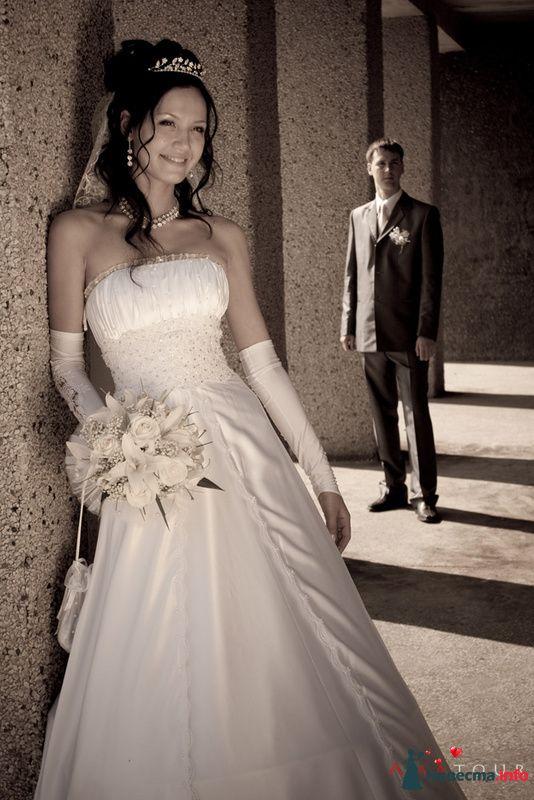 Фото 87350 в коллекции Amatour (свадебное) - Amatour