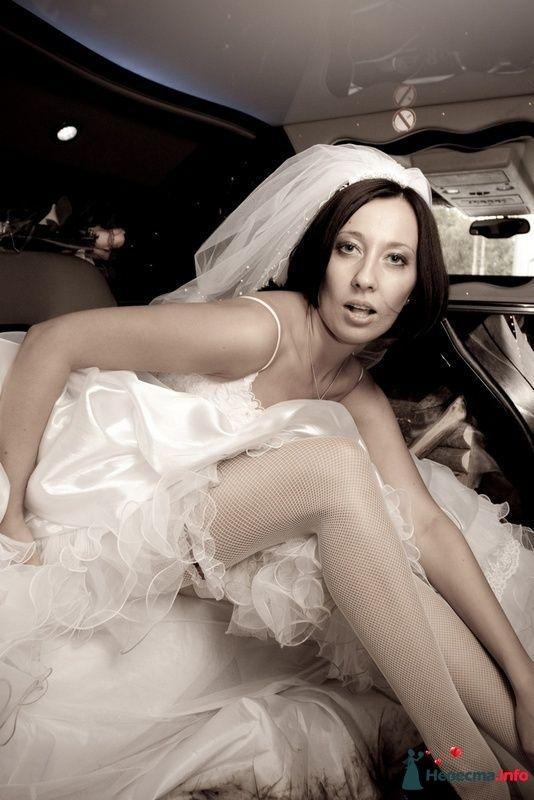 Фото 87365 в коллекции Amatour (свадебное) - Amatour