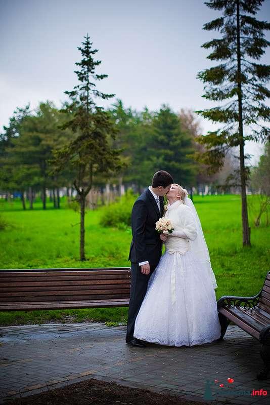 **** - фото 129217 Дмитрий Коробкин. Свадебный фотограф.