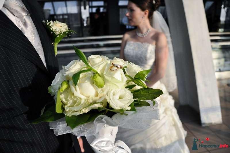 Фото 89620 в коллекции Мои фотографии - Невеста01