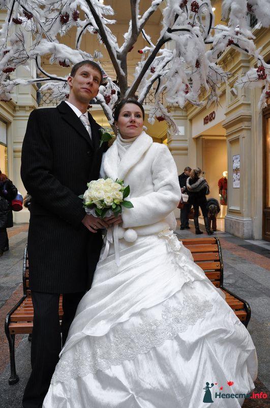 Фото 89628 в коллекции Мои фотографии - Невеста01