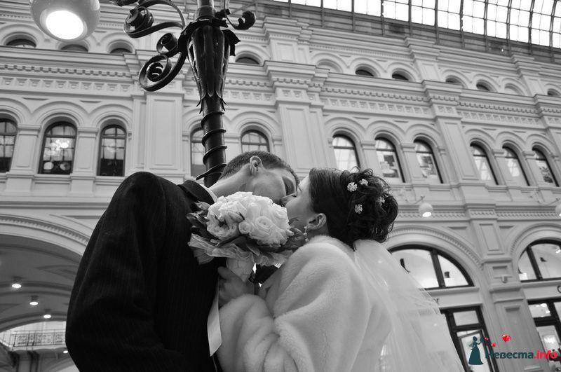 Фото 89635 в коллекции Мои фотографии - Невеста01