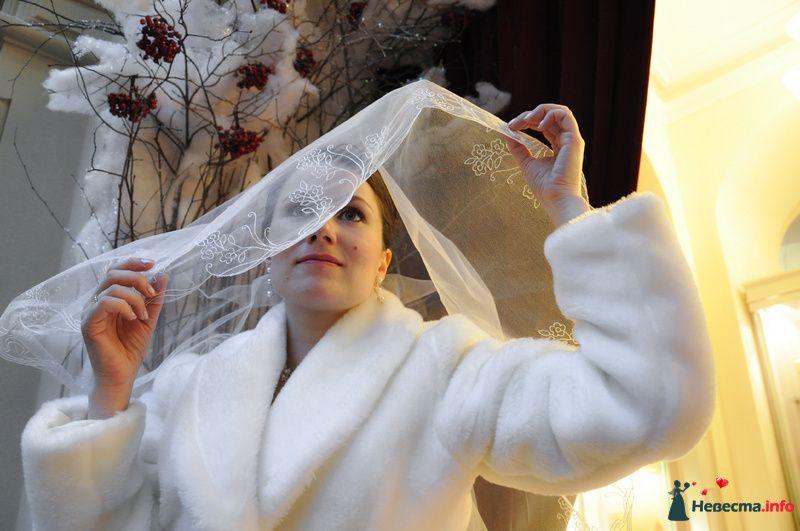 Фото 89638 в коллекции Мои фотографии - Невеста01