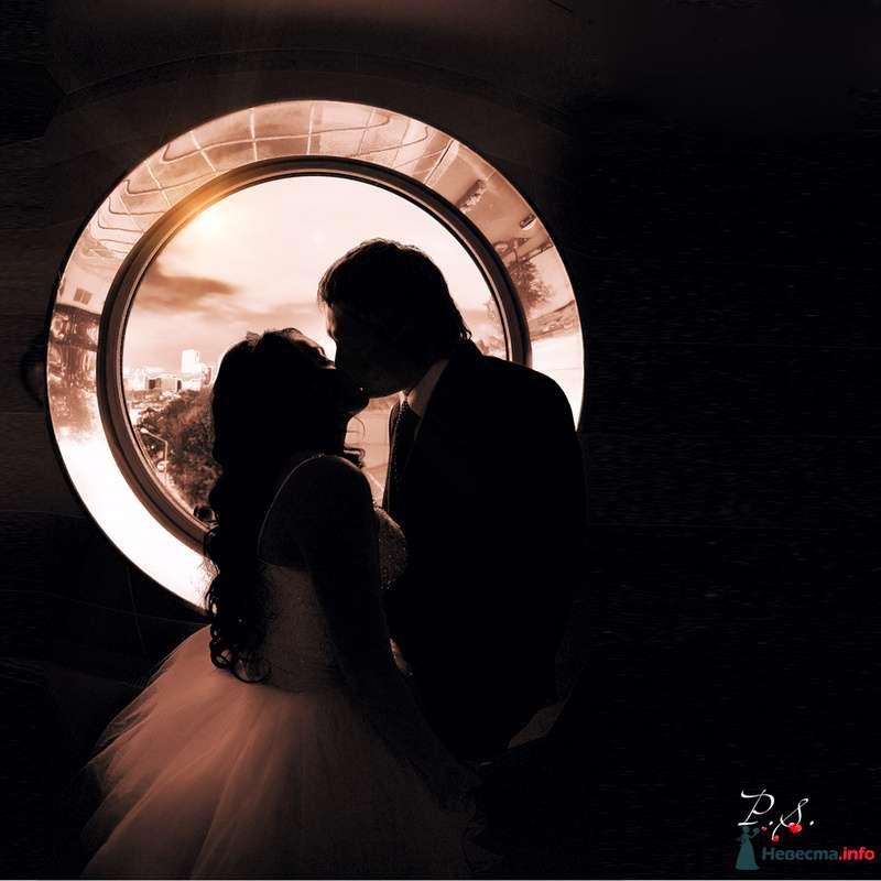 Авторская обработка фотографий  - фото 88700 Свадебный фотограф Петр Скаженюк