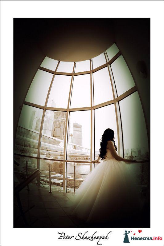 свадебный видеооператор Алексей Никулин - фото 88594 Видеооператор Алексей Никулин