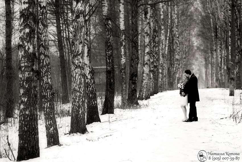 Фото 721257 в коллекции Мои фотографии - Фотограф и видеограф - Наталья и Сергей Котовы