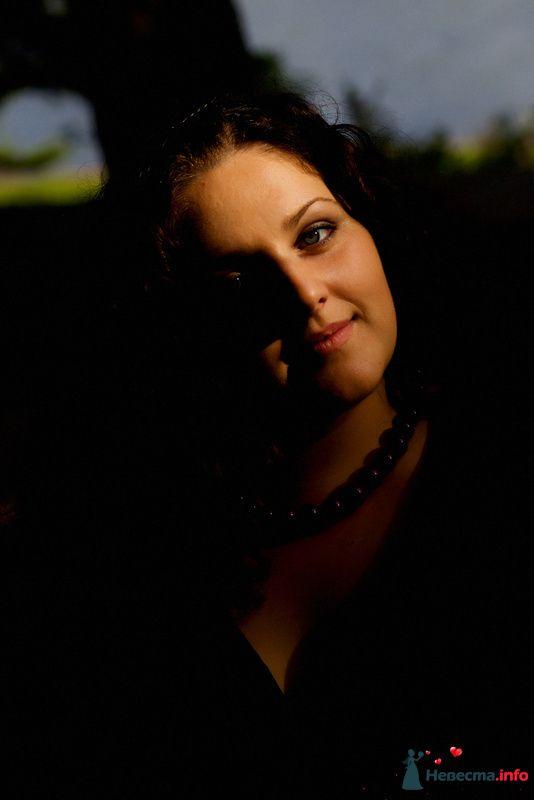 Фото 90025 в коллекции Мои фотографии