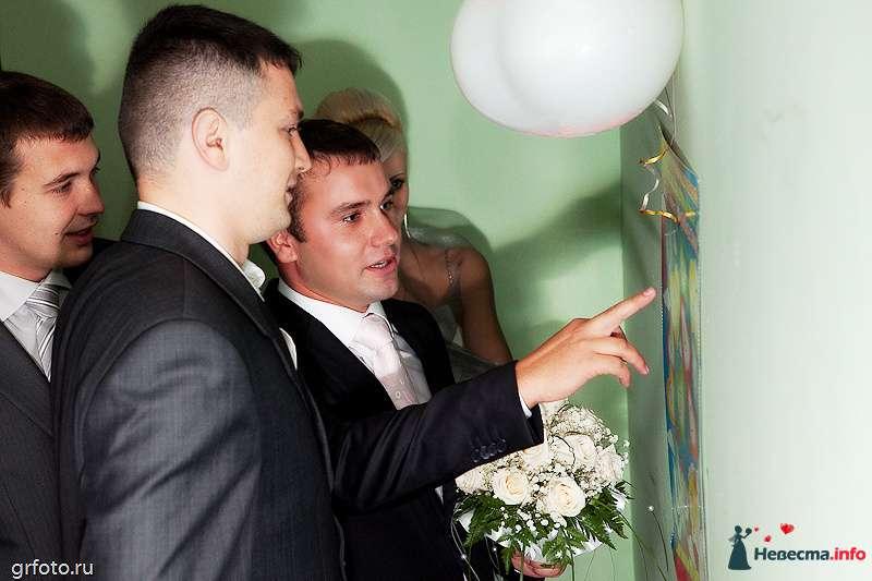Фото 89516 в коллекции Свадьбы - Фотограф Гришин Александр