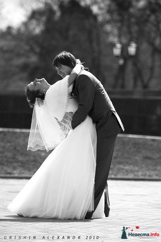 Фото 102074 в коллекции Свадьбы - Фотограф Гришин Александр