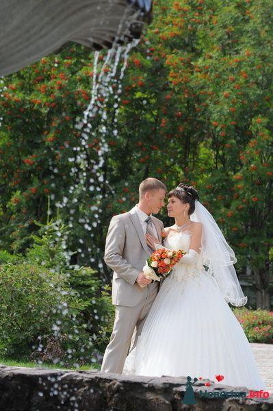 Фото 90798 в коллекции Из разных свадеб - Фотостудия Александра Золотарёва