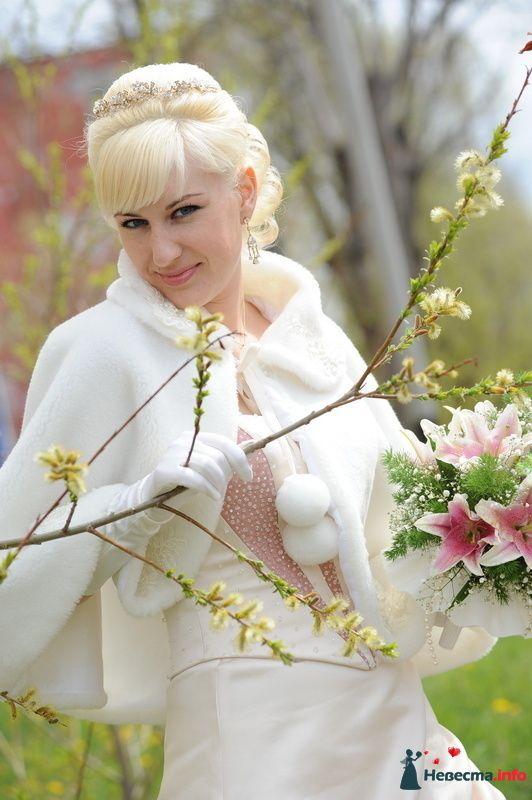 Фото 106039 в коллекции Из разных свадеб - Фотостудия Александра Золотарёва