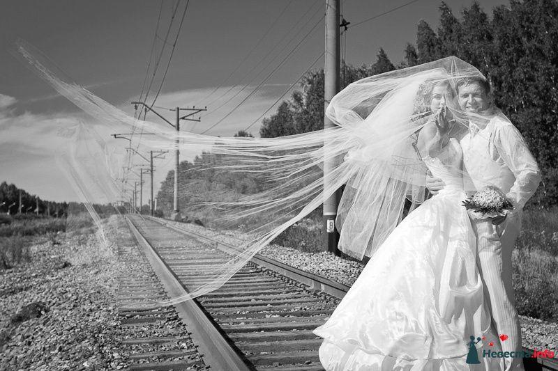 Фото 90907 в коллекции Моменты - LevBodrov