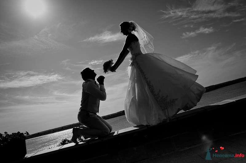 Жених стоит на коленях на пирсе рядом с невестой которая держит букет цветов - фото 90908 LevBodrov