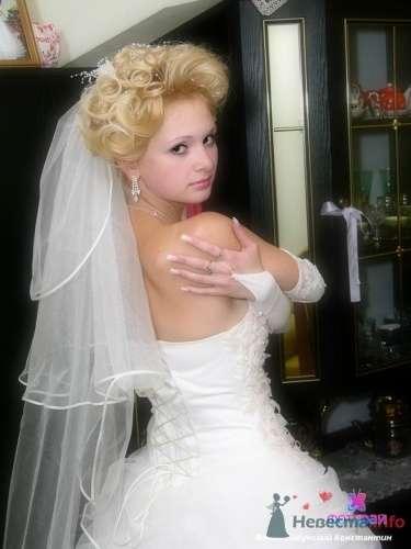 """Фото 13403 в коллекции Свадебная фотосъёмка - Студия """"ФотоРай"""""""