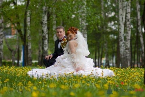 просто красивое фото профи! - фото 23137 Виктория_Клубничка