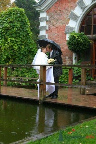 Фото 6273 в коллекции Свадьба - Невеста01