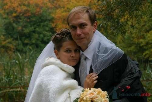 Фото 6274 в коллекции Свадьба - Невеста01