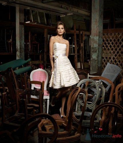"""Фото 7015 в коллекции Мои фотографии - Свадебный салон """"Эдмаэ"""""""