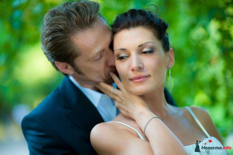 Фото 91912 в коллекции Мои фотографии - Свадебный фотограф Роман Пламеневский