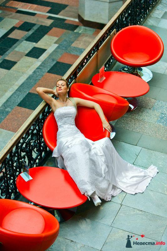 Фото 91923 в коллекции Мои фотографии - Свадебный фотограф Роман Пламеневский