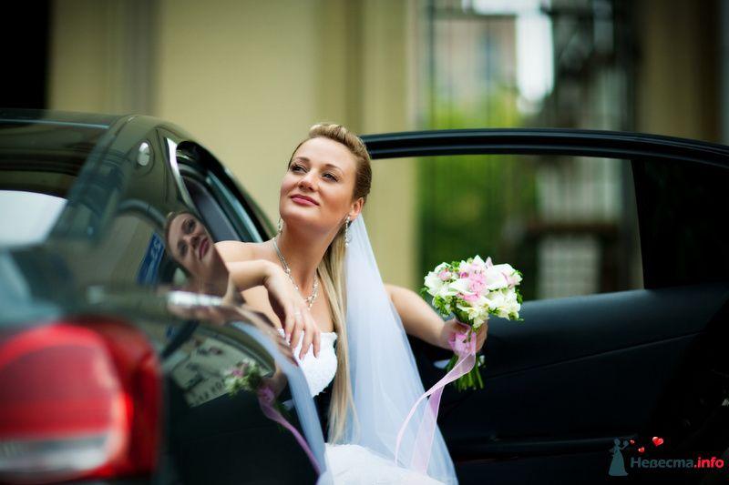 Фото 91926 в коллекции Мои фотографии - Свадебный фотограф Роман Пламеневский