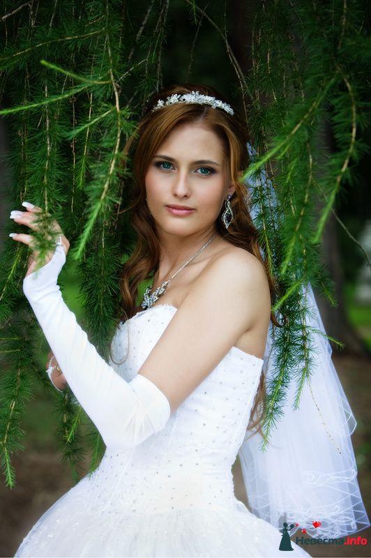 Фото 91931 в коллекции Мои фотографии - Свадебный фотограф Роман Пламеневский