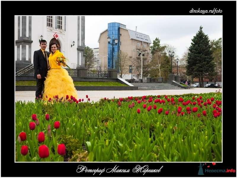Галина и Валерий - фото 91804 Фотограф Максим Жарников