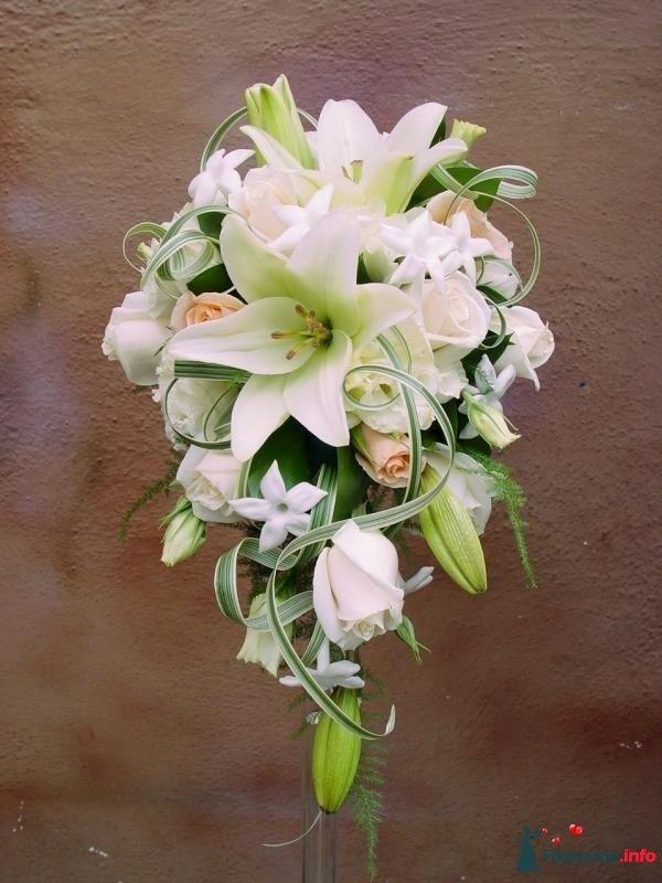 Каскадный букет невесты из белых лилий, белой бувардии, зелени и - фото 110800 kosca