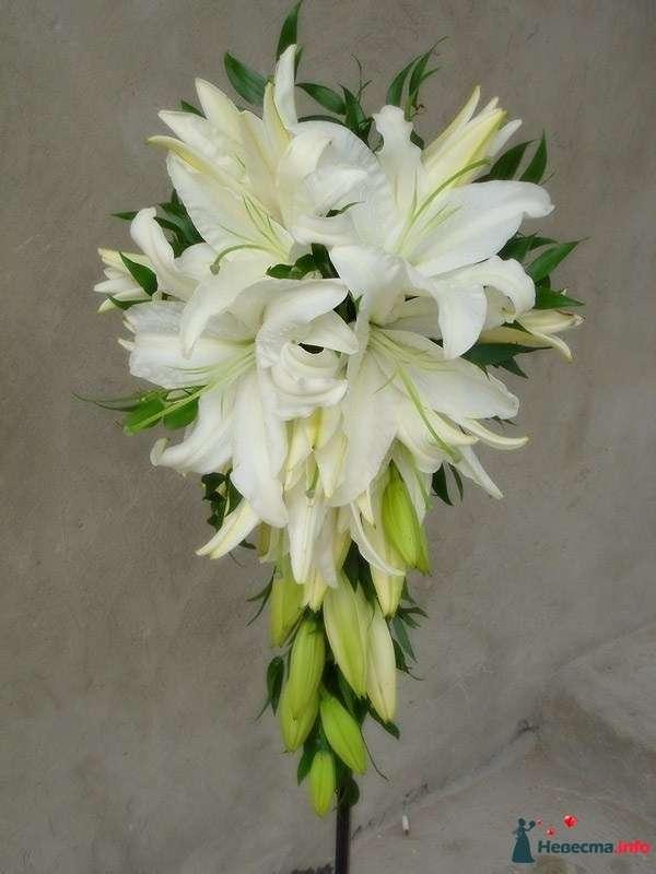 Фото 111493 в коллекции Любимые лилии - свадебные букетики - kosca