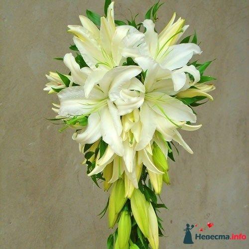 Фото 115316 в коллекции Любимые лилии - свадебные букетики - kosca