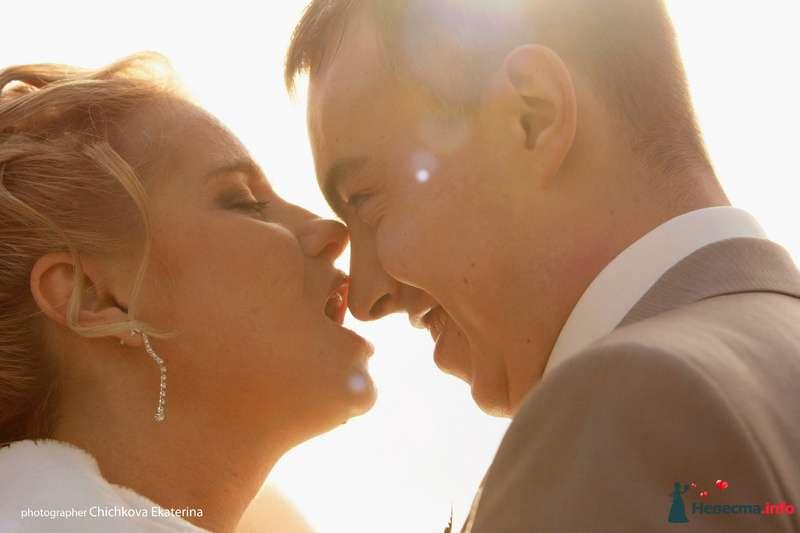 Фото 92232 в коллекции Свадьба - Фотограф Чичкова Екатерина