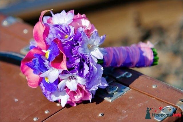 Букет невесты из розовых калл и сиреневых ирисов - фото 97262 SAFRU