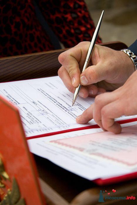 Фото 95305 в коллекции Выездная регистрация в Биробиджане - Агентство Министерство волшебства