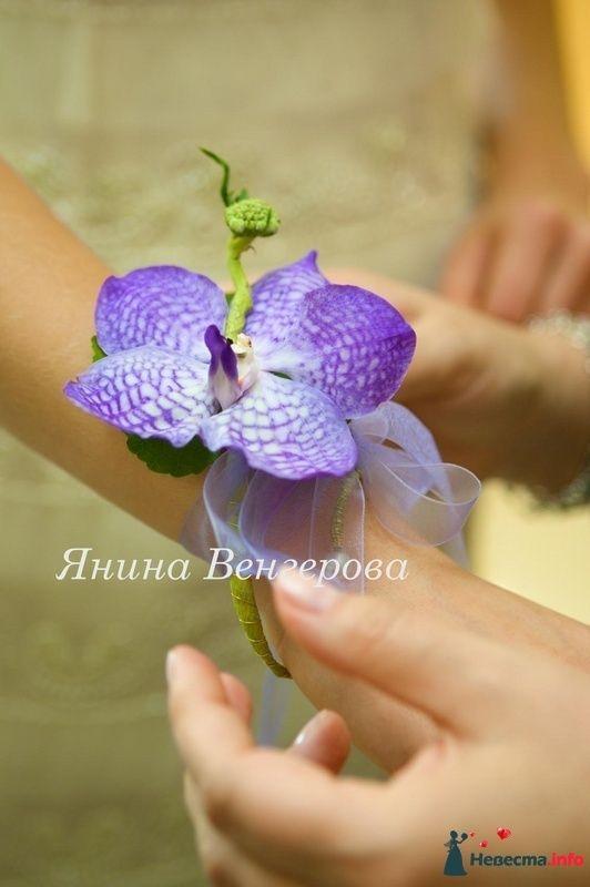 Фото 97245 в коллекции БУКЕТ НЕВЕСТЫ - Флорист-декоратор Янина Венгерова