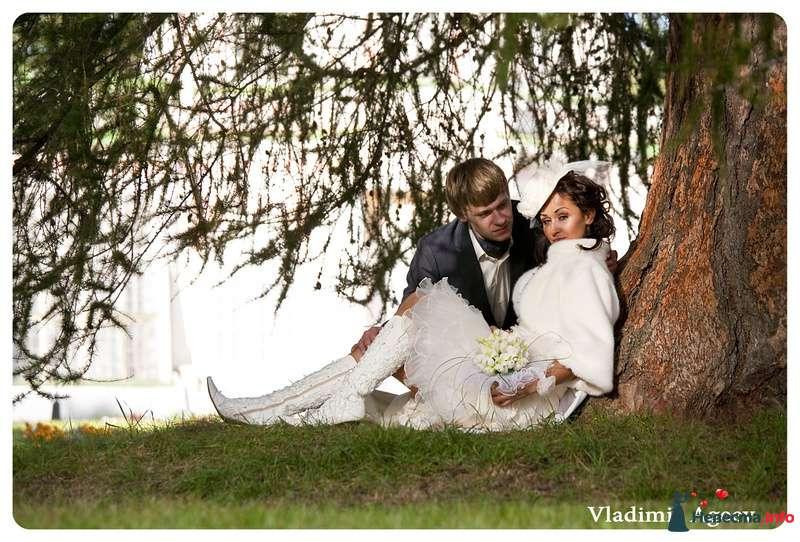 Фото 97545 в коллекции Свадьбы - Владимир Агеев - профессиональный фотограф