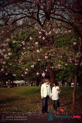 Фото 96011 в коллекции Wedding & Love - Holiday photographers - фотосъемки в России и Таиланде