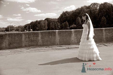 Фото 8542 в коллекции Свадебные фотографии - Невеста01