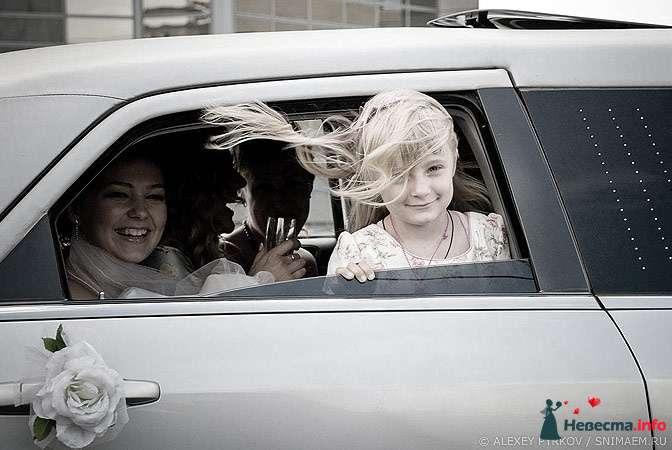 Фото 96964 в коллекции Мои фотографии - Алексей Пырков - фотограф свадеб и людей