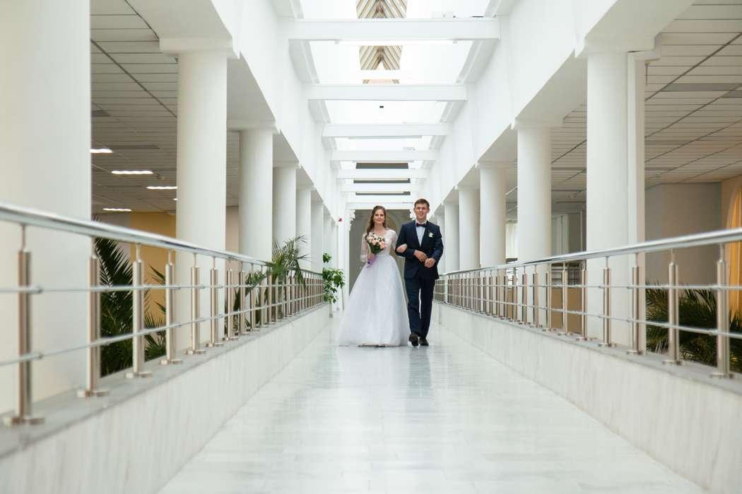 Выборгский загс санкт петербурга фото